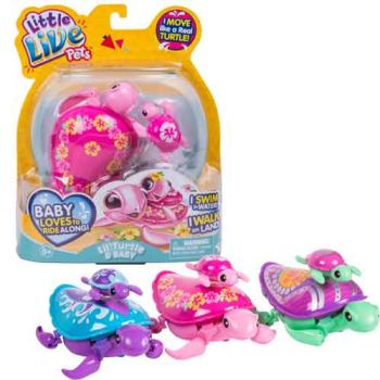 Little Live Pets S5  Lil Turtle Single Pack assorted